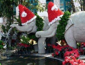 ChristmasElephantsThailand